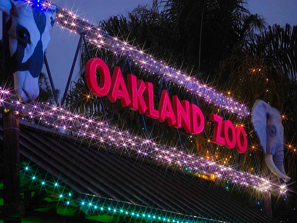 Zoo Lights Oakland Zoo