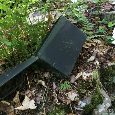 Nice to find an ammo can in the woods!