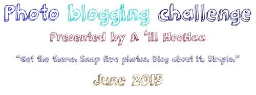 Photo Blogging #Challenge June 2015 theme: Anything Goes #photoblog (1/6)