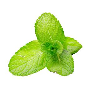 Fumari / Mint(単体で吸うと物足りないが、Mix素材としては優秀)
