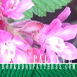 Colour Scheme #5 Garden Flowers Yarn Palette Selection