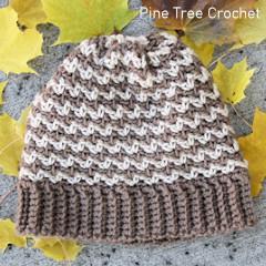 Autumn Crunch Beanie Free Crochet Pattern