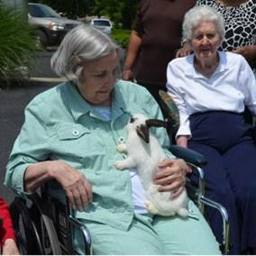 gallerysize_0005_nursing home 4