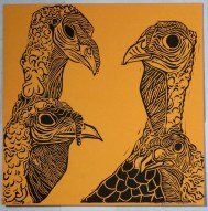 turkeys #1