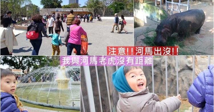 新竹市東區||新竹動物園,停車這裡最便利,最佳觀察動物時間!
