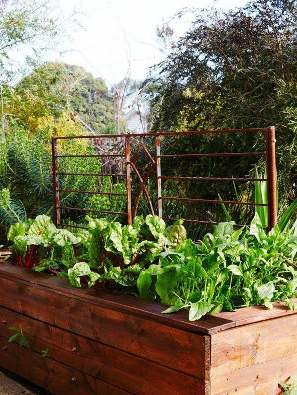 Inspiring Veggies Garden Layout For Your Outdoor Ideas 01