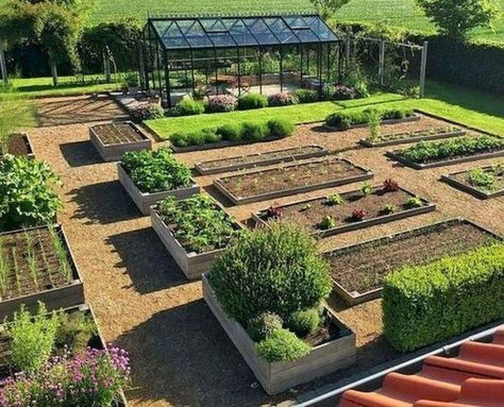 Inspiring Veggies Garden Layout For Your Outdoor Ideas 08