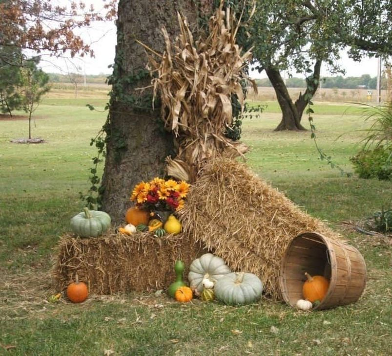 The Best Fall Outdoor Decor Ideas You Will Like 38