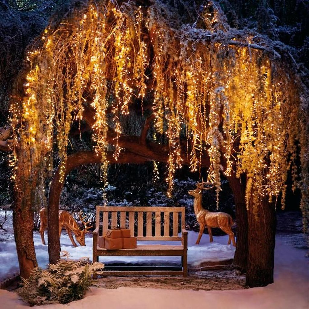 Awesome Christmas Lights Ideas For Exterior Decoration 24