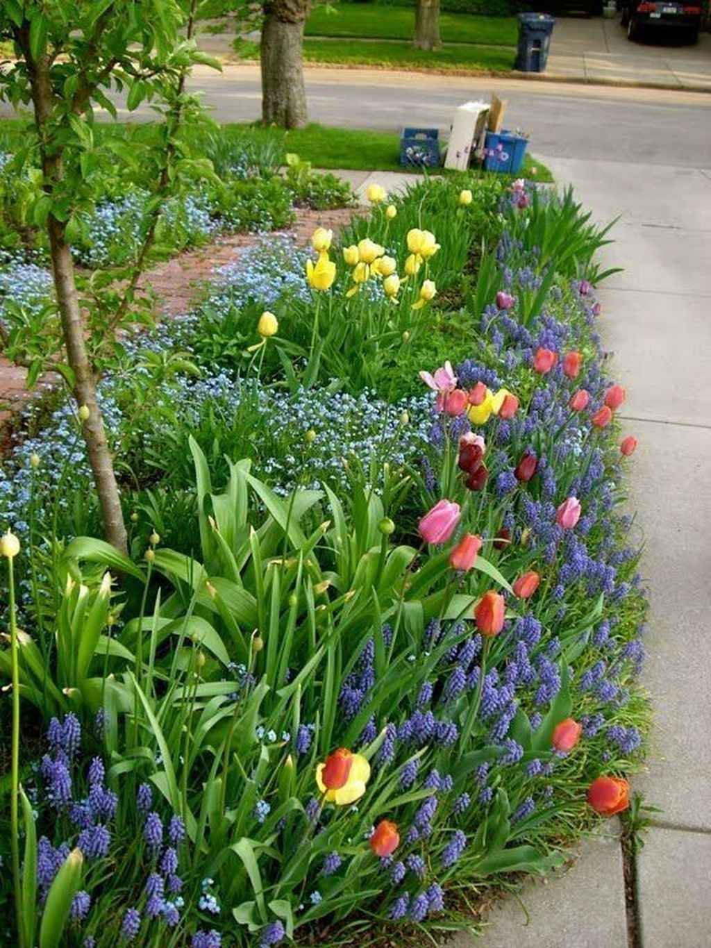 Beautiful Spring Backyard Landscape Ideas You Should Copy 06