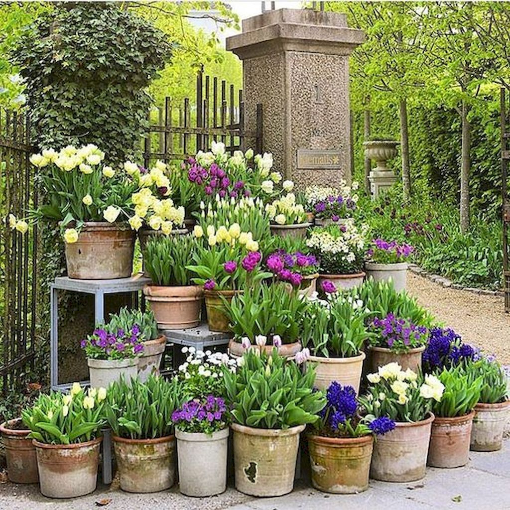 Beautiful Spring Backyard Landscape Ideas You Should Copy 18