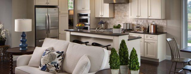 Open Kitchen Living Room