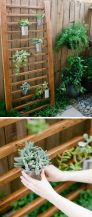 Best backyard ideas on a budget 15