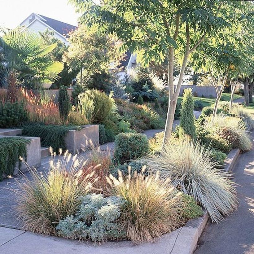 Texas Style Front Yard Landscaping Ideas 44