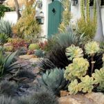 Texas Style Front Yard Landscaping Ideas 31