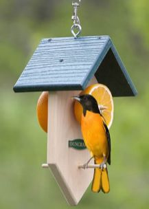 Creative DIY Bird Feeder Ideas 29
