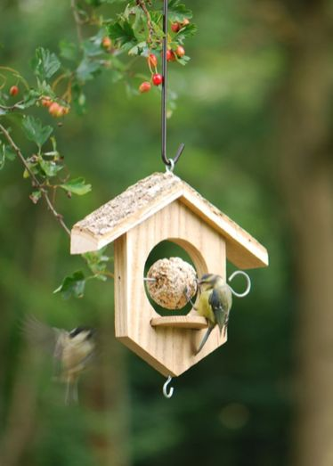 Creative DIY Bird Feeder Ideas 44
