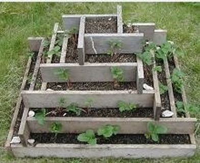 Simple DIY Vertical Garden Ideas 5
