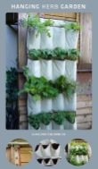 Simple DIY Vertical Garden Ideas 58