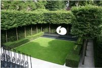 Fascinating Evergreen Pleached Trees for Outdoor Landscaping 30
