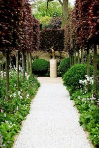 Fascinating Evergreen Pleached Trees for Outdoor Landscaping 34