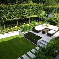 Fascinating Evergreen Pleached Trees for Outdoor Landscaping 51