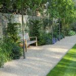 Fascinating Evergreen Pleached Trees for Outdoor Landscaping 65