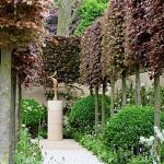 Fascinating Evergreen Pleached Trees for Outdoor Landscaping 77