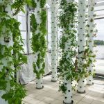 Inspiring Vertical Garden Ideas for Small Space 2