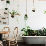 Amazing Indoor Jungle Decorations Tips and Ideas 10