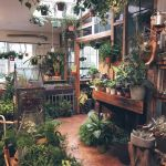 Amazing Indoor Jungle Decorations Tips and Ideas 2
