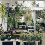 Amazing Indoor Jungle Decorations Tips and Ideas 21