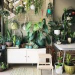 Amazing Indoor Jungle Decorations Tips and Ideas 22