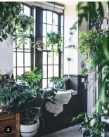 Amazing Indoor Jungle Decorations Tips and Ideas 32