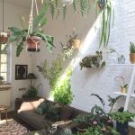 Amazing Indoor Jungle Decorations Tips and Ideas 33