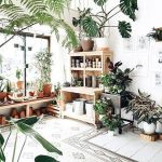 Amazing Indoor Jungle Decorations Tips and Ideas 40