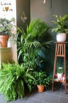 Amazing Indoor Jungle Decorations Tips and Ideas 43