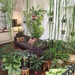 Amazing Indoor Jungle Decorations Tips and Ideas 50