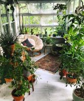 Amazing Indoor Jungle Decorations Tips and Ideas 6