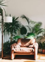 Amazing Indoor Jungle Decorations Tips and Ideas 70
