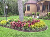 Colorful Landscaping with Low Maintenace Flower Bushes 17