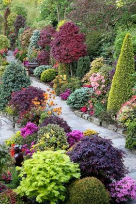 Colorful Landscaping with Low Maintenace Flower Bushes 33