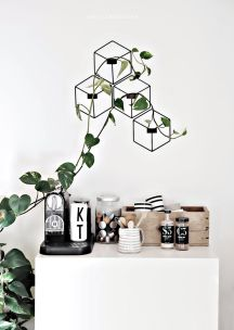 Marvelous Indoor Vines and Climbing Plants Decorations 15