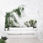 Marvelous Indoor Vines and Climbing Plants Decorations 38