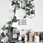 Marvelous Indoor Vines and Climbing Plants Decorations 47