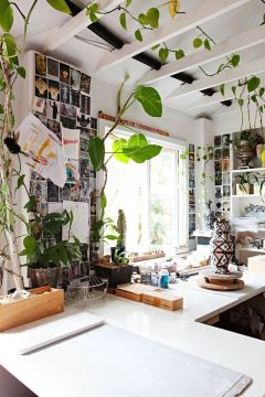 Marvelous Indoor Vines and Climbing Plants Decorations 7