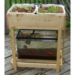 Mini Aquaponics with Fish for Home Decorations 16