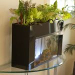 Mini Aquaponics with Fish for Home Decorations 21