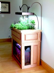 Mini Aquaponics with Fish for Home Decorations 33