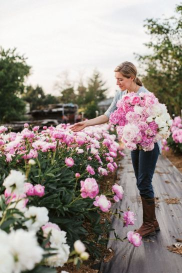 Beauty Flower Farm Which Will Make You Want to Have It 5